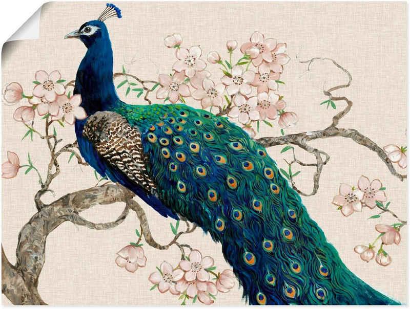 Artland Wandbild »Pfau & Blüten II«, Vögel (1 Stück), in vielen Größen & Produktarten - Alubild / Outdoorbild für den Außenbereich, Leinwandbild, Poster, Wandaufkleber / Wandtattoo auch für Badezimmer geeignet