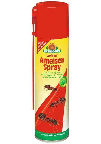 NEUDORFF Insektenspray »Loxiran Ameisen Spray« ...