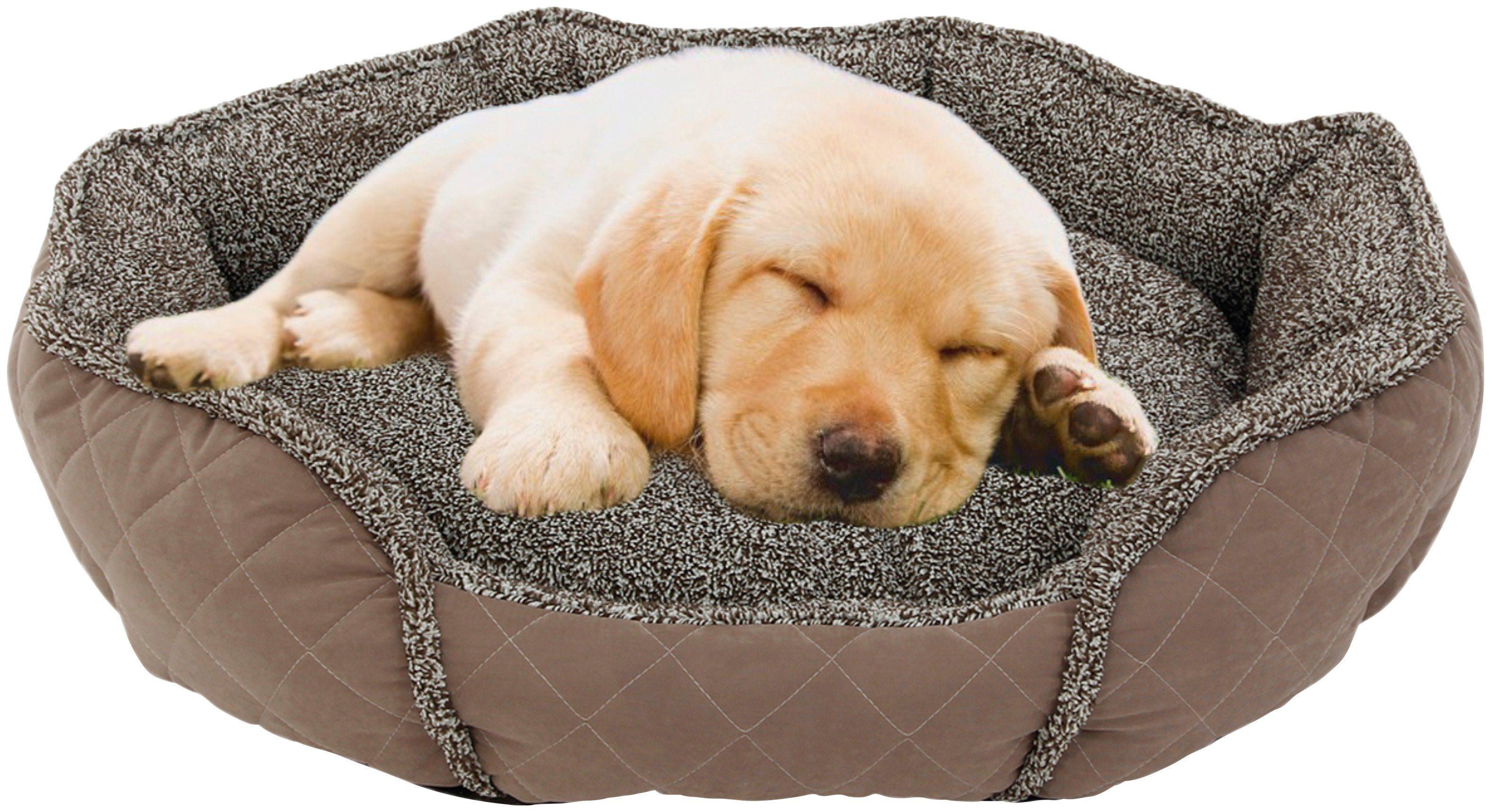 HEIM Hundebett und Katzenbett »Slurry«, BxLxH: 52x57x14 cm
