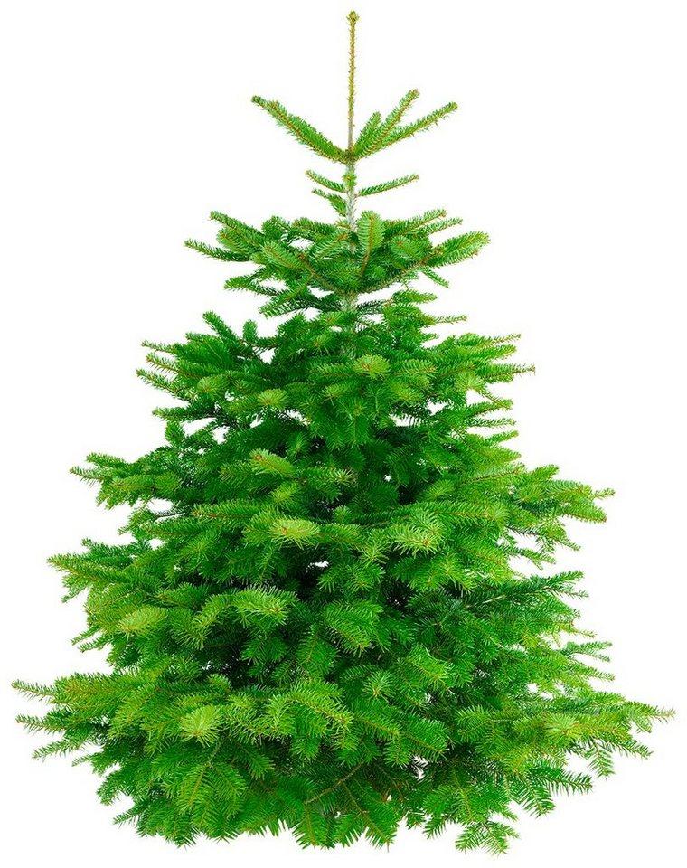 weihnachtsbaum nordmanntanne frisch geschlagen h he. Black Bedroom Furniture Sets. Home Design Ideas