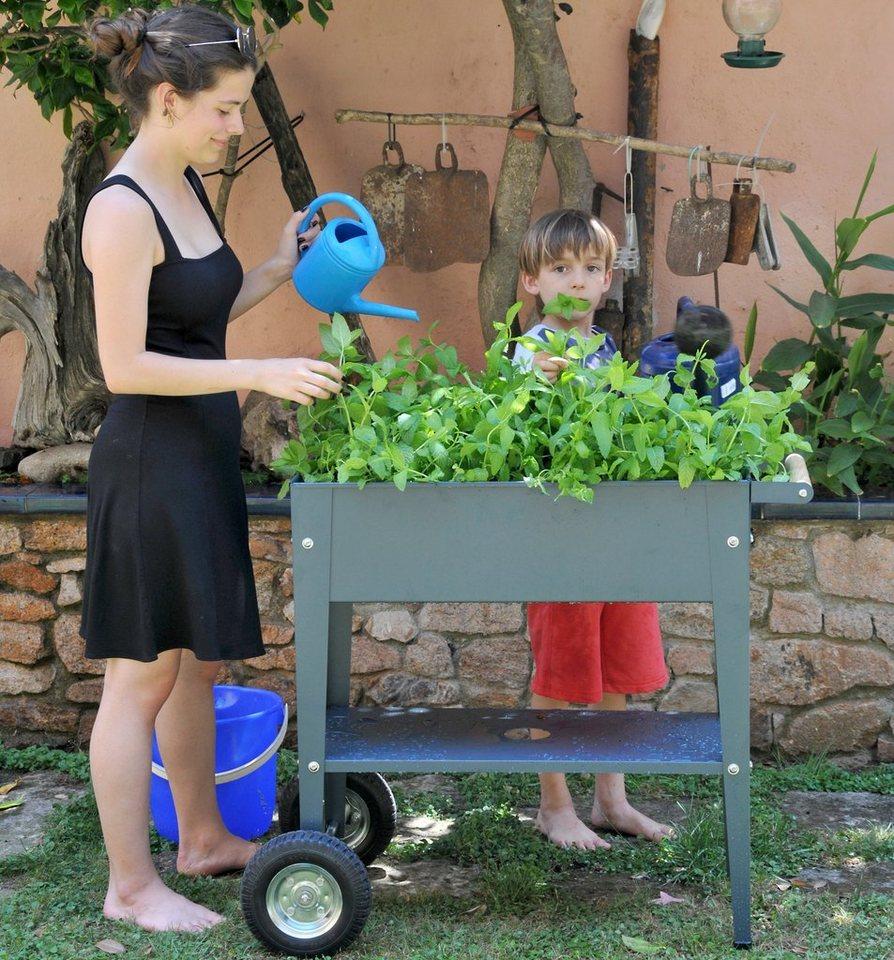 Herstera Garden Hochbeet Urban Bxtxh 75x35x80 Cm Online Kaufen