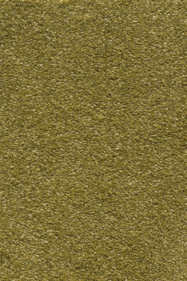 ANDIAMO Teppichboden »Mosel«, Breite 500 cm | Baumarkt > Bodenbeläge > Teppichboden | Grün | Andiamo