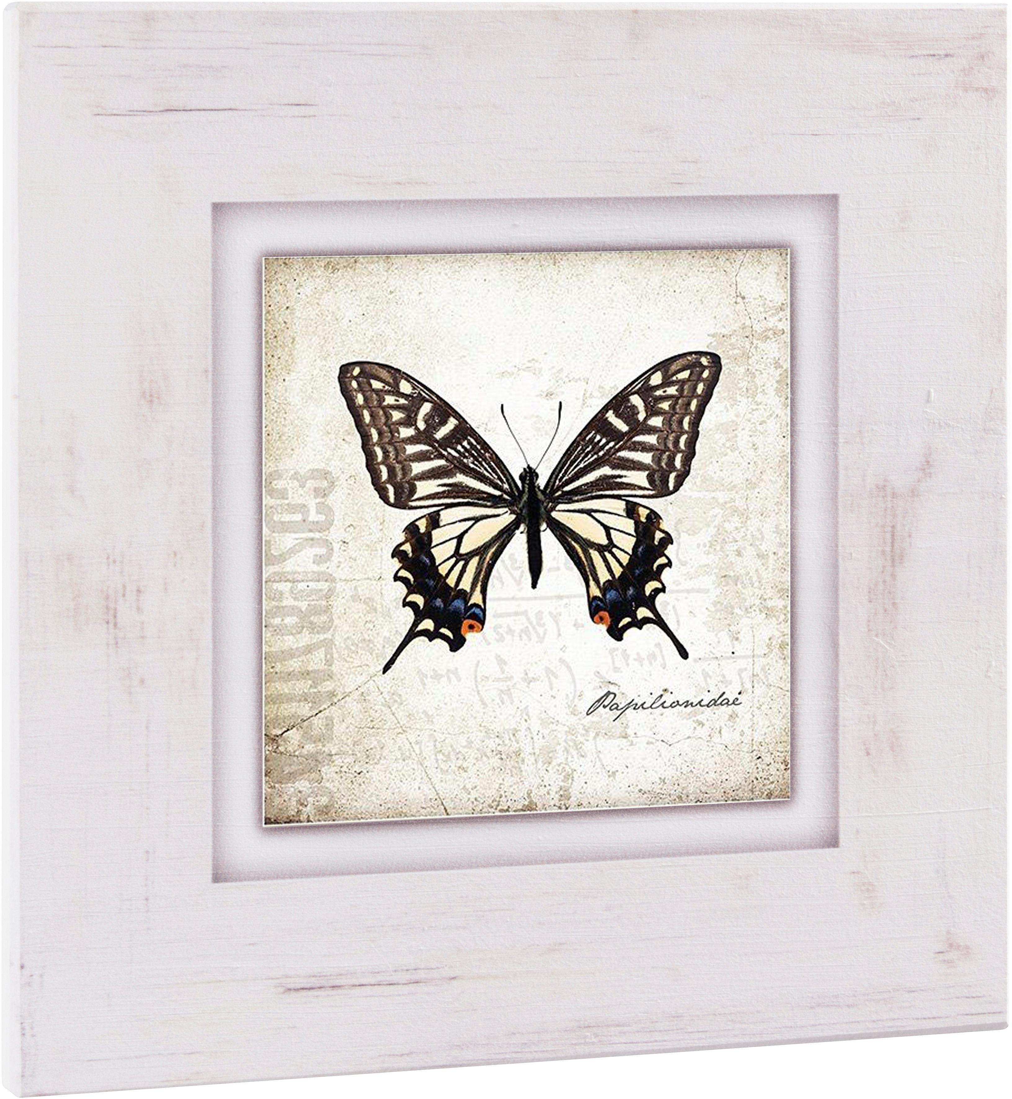 Home affaire Holzbild »Brauner Schmetterling«, 40/40 cm