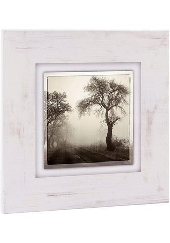 HOME AFFAIRE Paveikslas »Bäume im Nebel«
