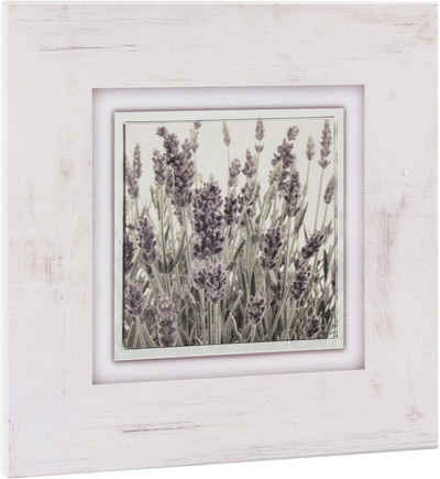 Home affaire Holzbild »Lavendel«, 40/40 cm