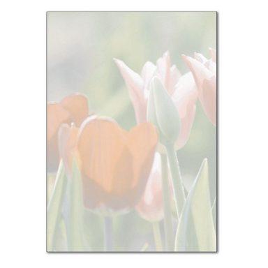Sigel Designpapier DP462 »Spring Fever«