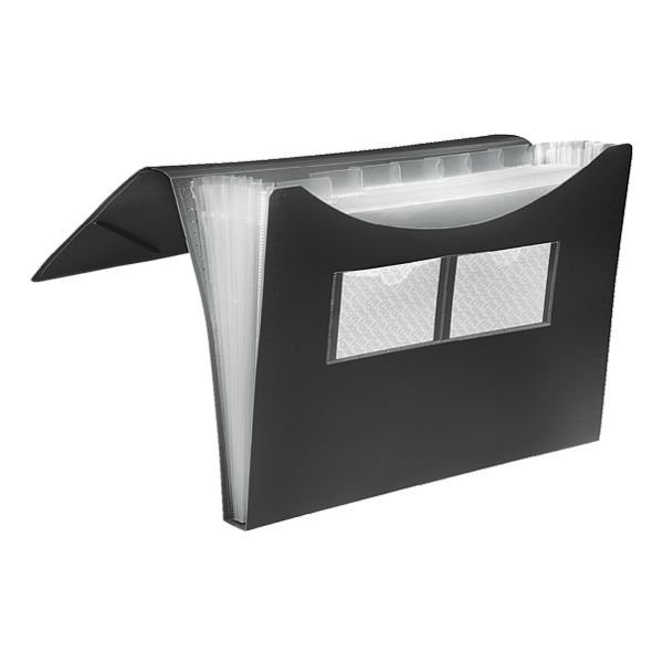 Foldersys Fächermappe in schwarz