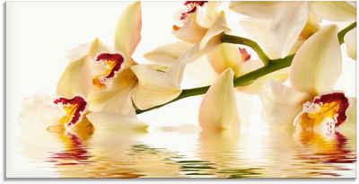 Artland Glasbild »Weiße Orchidee mit Wasserreflektion«, Blumen (1 Stück)