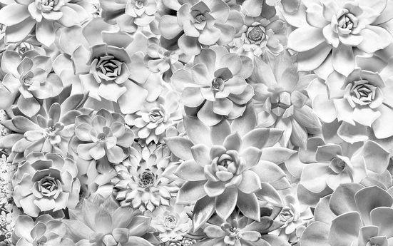 Vliestapete »Pure Shades Black and W«, naturalistisch
