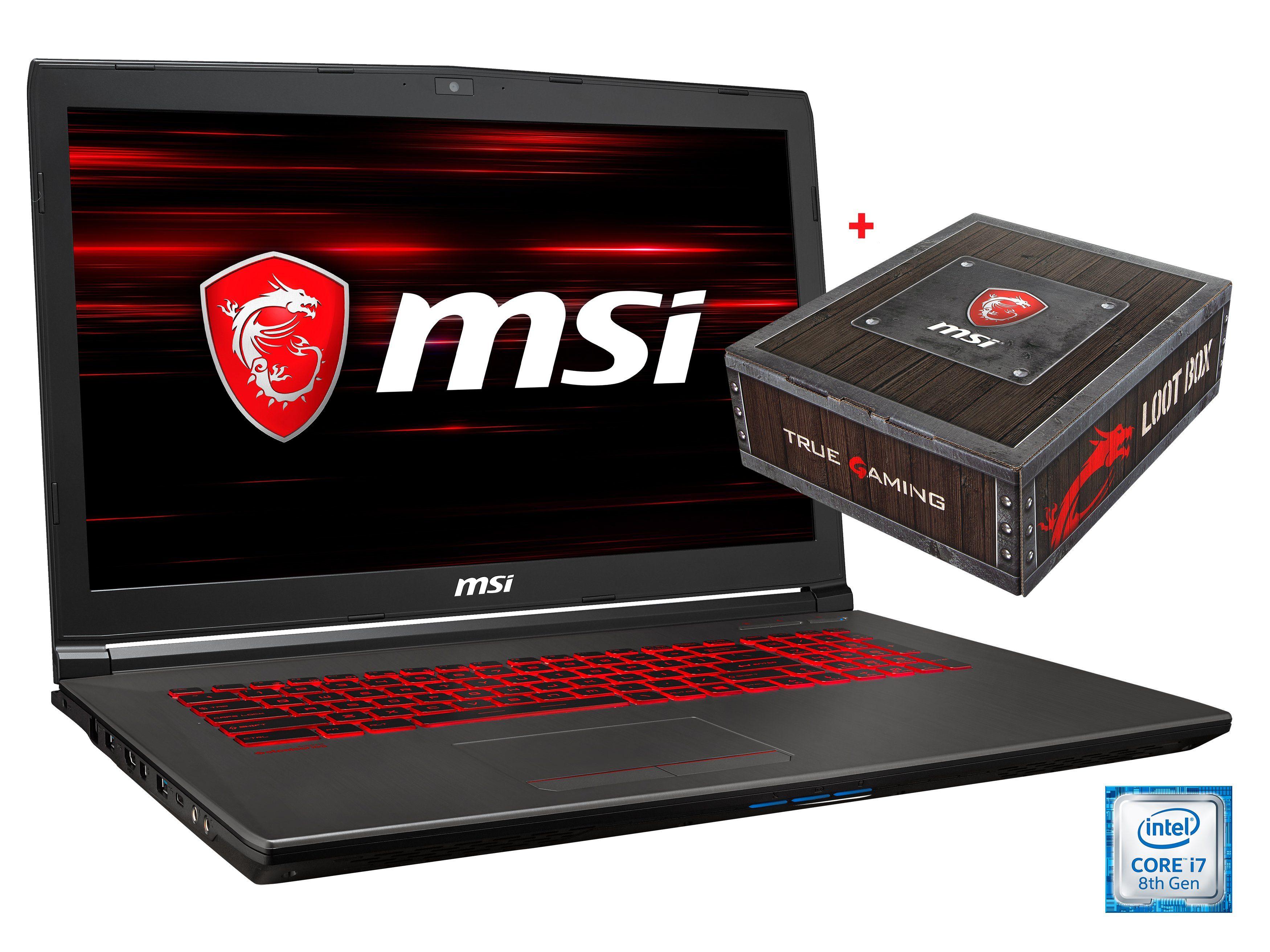 "MSI 17,3"" Intel® i7-8750H 16GB SSD + HDD GeForce® GTX 1060 »GV72 8RE-013DE (00179E-013)«"