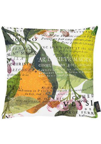 APELT Dekoratyvinė pagalvėlė »1704«