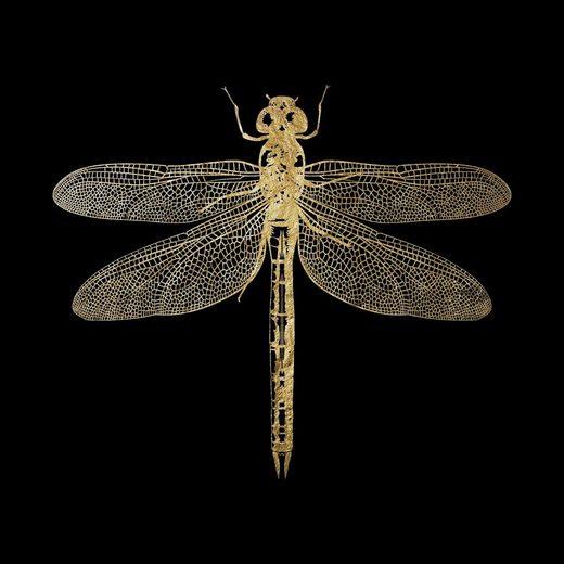 Leonique Acrylglasbild »Libelle«, Tiermotiv