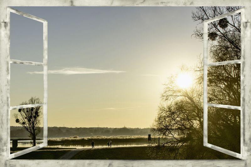 Artland Poster oder Leinwandbild »Nöhmeier: Fensterblick Europareservat Unterer Inn«