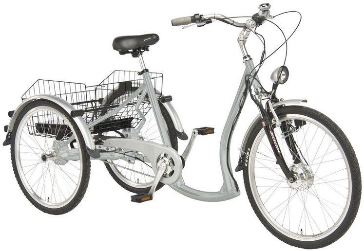 Wild Eagle E-Bike, 7 Gang Shimano NEXUS Schaltwerk, Nabenschaltung, Frontmotor 250 W