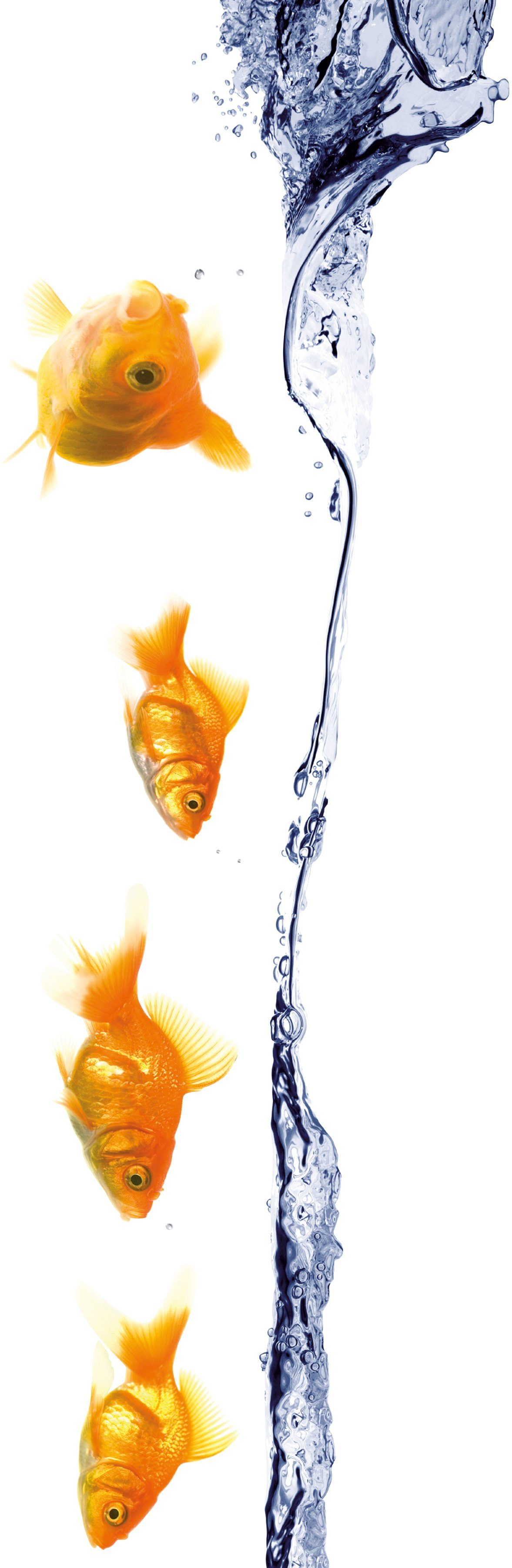 KLEINE WOLKE Selbstklebefolie »Unterwater«, für Badezimmer- und Duschtrennwände