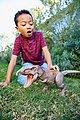 Mattel® Spielfigur »Jurassic World Dino Rivals Superbiss-Kampfaction Tyrannosaurus Rex«, Bild 8