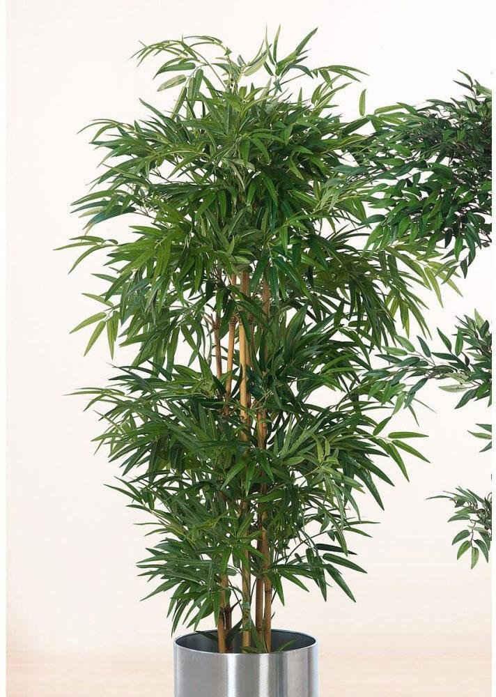 Kunstpflanze »Bambusbaum«, Schneider, Höhe 160 cm