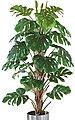 Kunstpflanze »Philo-Baum«, Schneider, Höhe 180 cm, Bild 1