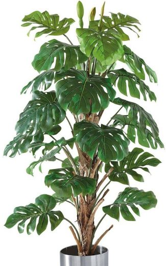 Kunstpflanze »Philo-Baum«, Schneider, Höhe 180 cm
