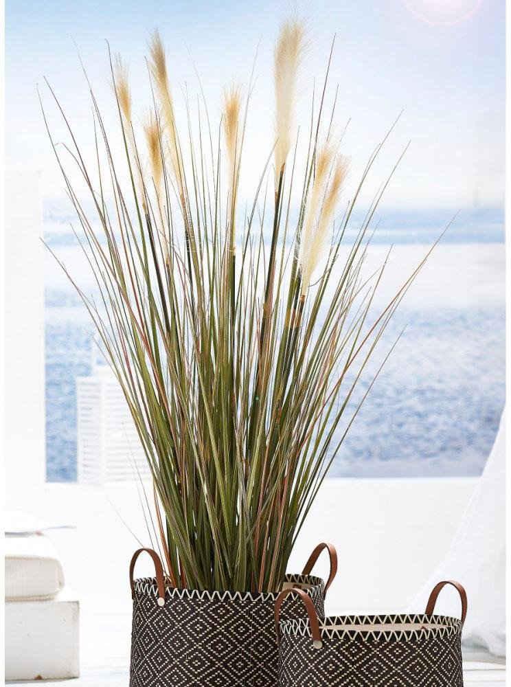 Kunstpflanze »Wildgras«, Schneider, Höhe 143 cm