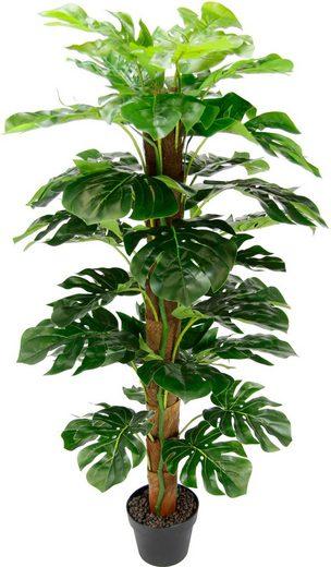 Kunstpflanze Splitphilopflanze, I.GE.A., Höhe 120 cm
