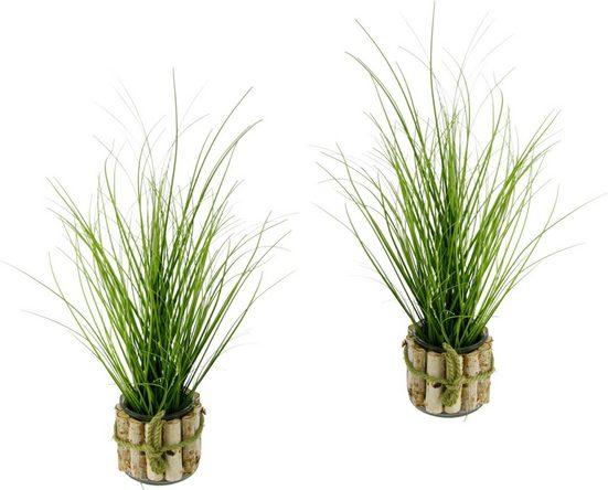 Kunstpflanze (Set, 2 Stück)