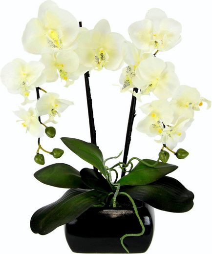 Kunstpflanze Phalaenopsis, I.GE.A., Höhe 58 cm
