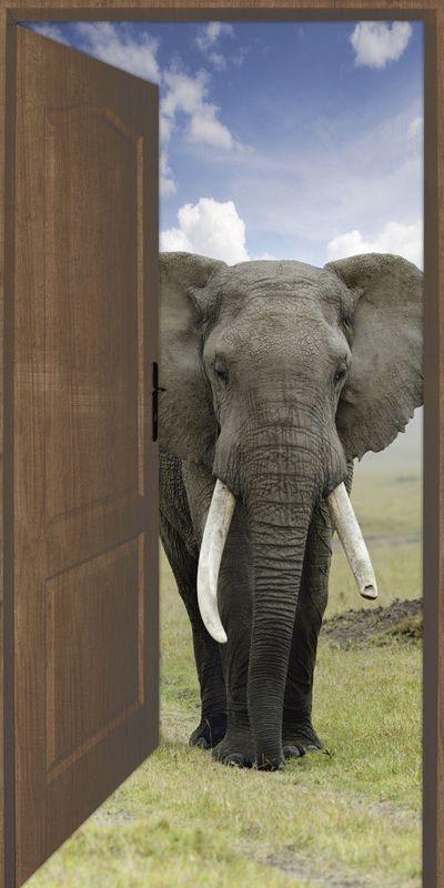 Artland Wandfolie »Keller: Offene braune Türe mit Blick auf Elefant«