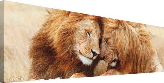 Reinders! Wandbild »Löwenliebe«