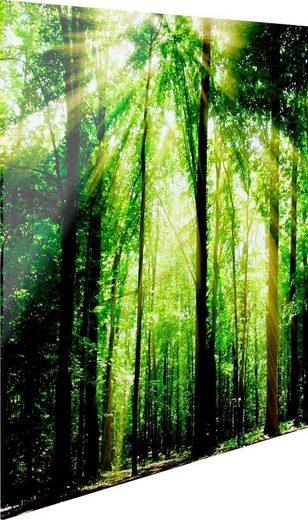 Glasbild »Grünes Licht«