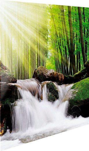 Glasbild »Feng Shui Wald«