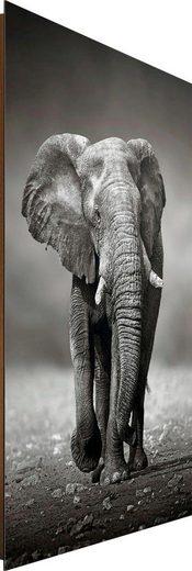 Deco-Panel »Elefant Wanderung «, 60/90 cm