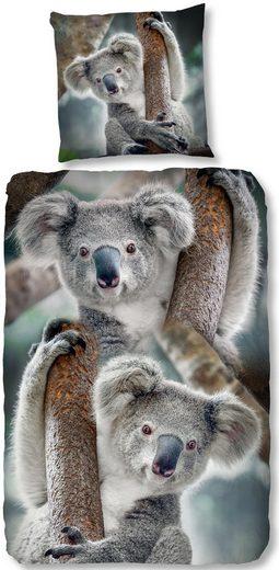 Kinderbettwäsche »Koala«, good morning, mit Koalabären