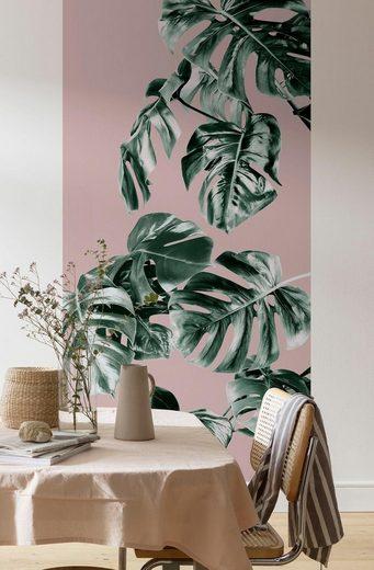 Vliestapete »Monstera Rosé«, naturalistisch