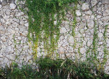 Fototapete »Natursteinmauer Vlies«, matt, glänzend, 350 x 255 cm