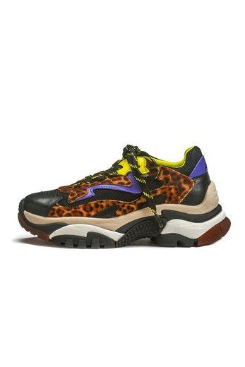 Ash »Addict« Sneaker