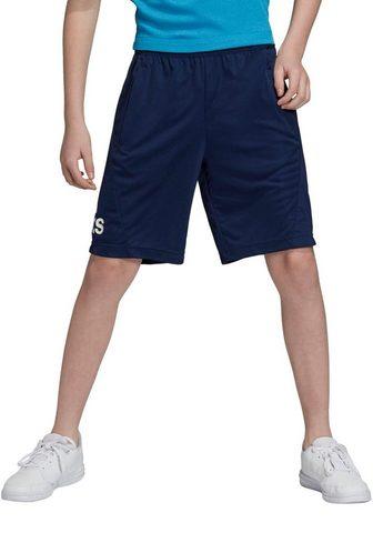 ADIDAS PERFORMANCE Sportiniai šortai »YOUNG BOY TRAINING ...