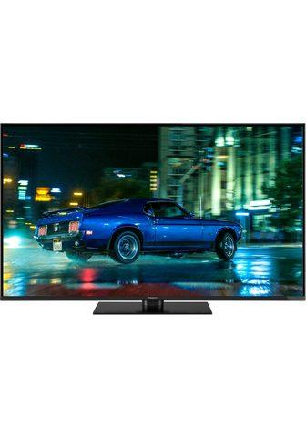 TX-49FXW554 LED-Fernseher (123 cm / (4...