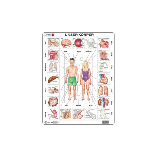 Larsen Rahmen-Puzzle, 35 Teile, 36x28 cm, Unser Körper