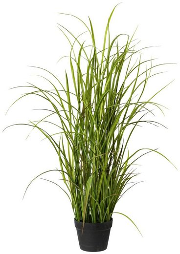 Kunstpflanze »Wiesengras«, im Topf, H: 120 cm
