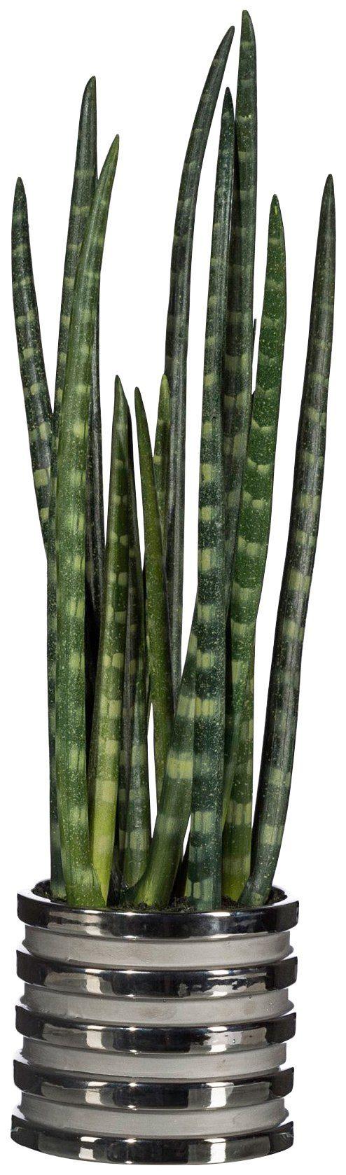 Kunstpflanze »Sanseveria«, im Keramiktopf, H: 18 cm