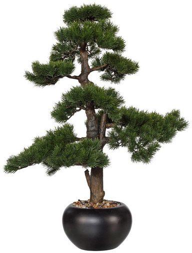 Kunstpflanze »Bonsai Kiefer«, im Keramiktopf, H: 70 cm