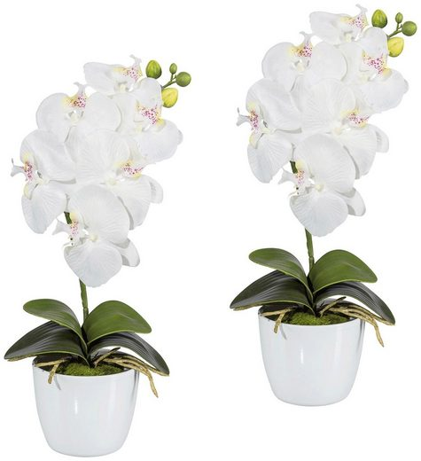 Kunstpflanze »Orchidee Phalaenopsis«, 2er Set im Keramiktopf, H: 40 cm