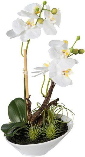 Kunstorchidee Orchideenarrangement in Keramikschalem, Real touch