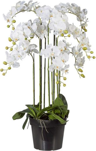 Kunstpflanze Orchidee, Creativ green, Höhe 110 cm