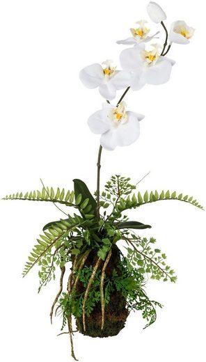 Kunstorchidee, weiß, in verschiedenen Höhen