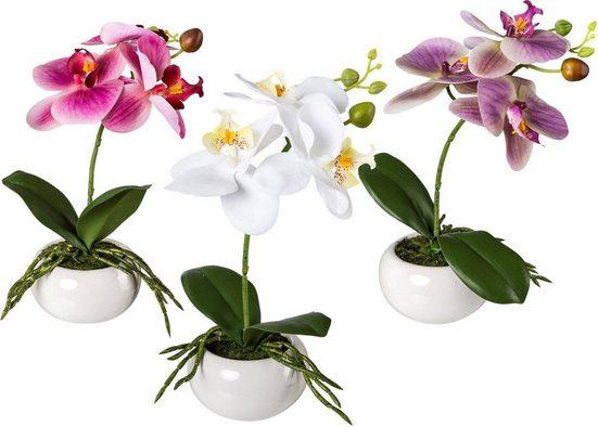 Kunstpflanze Orchidee, Creativ green, Höhe 27 cm, 3er Set