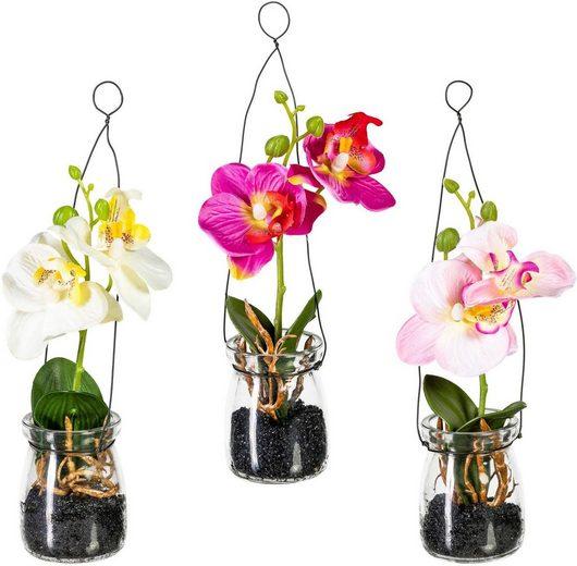 Kunstpflanze Orchidee, Creativ green, Höhe 20 cm, 3er Set