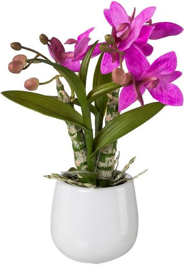 Kunstpflanze Orchidee, Creativ green, Höhe 32 cm, Japanorchidee im Keramiktopf, Real Touch