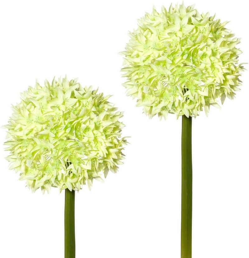 Kunstblume, Creativ green, Höhe 65 cm, 2er Set